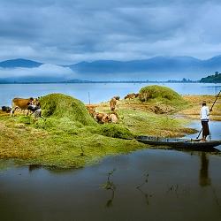 Đời sống trên hồ Lak