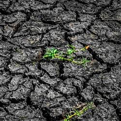 mùa khô