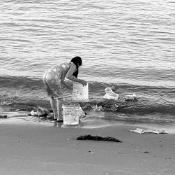 Sạch nhà họa biển
