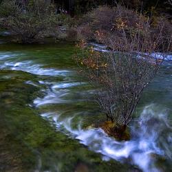 Suối nguồn