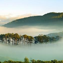 Thung lũng sương