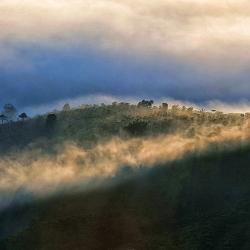 a3-Sương giăng lưng đồi