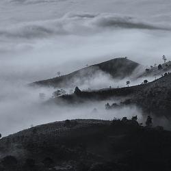 a4-Đồi quyện trong mây